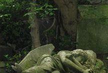 Death / by Sassafras