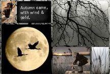 Autumn in Black