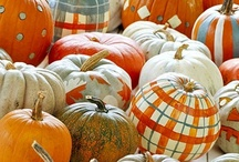 Pumpkin Birthday Party / Is your little pumpkin having a birthday? Find recipes, decor, and craft ideas here.