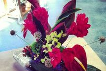 In House Tropical Designs / Tropical floral arrangements we've made in our studio!