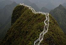 Walk this way / Choose a path / by Zane Emily