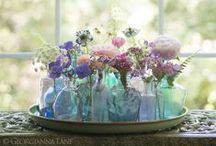 Blossoms & Botanicals / The beauty of blooms & nature / by Alia ✿