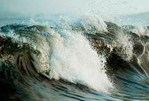 Water, Water Everywhere / by Kathryn Reinardy