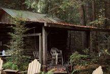 cabin / cabin dreams