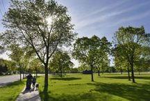 Parks, splash pads, beaches / Parks, splash pads in St. Cloud area / by St. Cloud Times