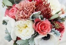 Amazing bouquets / by Corinne Kowal @emeraldgreeninteriors.com