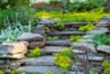 Landscaping Ideas - Hillside