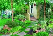 Landscape Ideas - Garden Paths