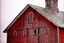 I Love Barns / by Cindy Rescigno