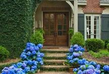 Dream House Wish Book and Ideas / by Glenda Bozeman