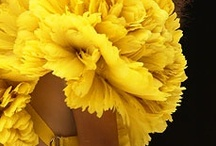 Style: Yellow / by Simona Balian Ramos