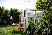 garden / by Claire Mossong