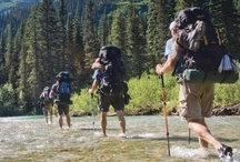 Camping! Hiking! Outdoors!  / The great outdoors where I can camp, hike, bike, explore, and play!  / by Stacy Crnkovich