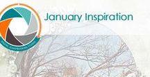 The Studio: January Inspiration