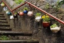 Green thumb and fun yard / planting ideas and yard ornaments