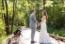 Saratoga National Wedding Photography / Saratoga National wedding photography in Saratoga Springs, NY.  Tracey Buyce Photography visit: www.traceybuyce.com