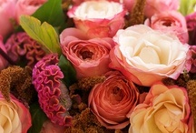 ~✿ Bouquets / by Anna ✿ K.