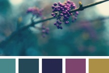 Color Inspiration! / A collection of color palettes that inspire!  All of these and more can be found on Design-seeds.com, and they are great tools for developing your project color schemes.  Whether you are planning a wedding, an event, decorating your home, or just freshening up your decor, let these be a jumping off point for developing your color palette! / by Virginia Floral Company