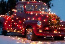 Holidays/ Seasons / by Marinda Ledermann