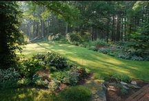 Outside Garden