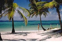 Tampa Bay Beach Vacation Rentals