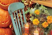 Fall Festivities / by Rachel Maurer
