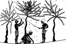 L' olio nella storia - la storia dell' olio olive oil in the history - history of olive oil / L' olio nella storia - la storia dell' olio olive oil in the histiry - history of olive oil