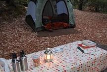 The Great Outdoors / Camping