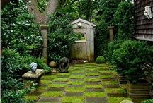 Gardening Is Why I Love The Summer / Gardening and loving my outdoor spaces.  / by Elizabeth Maines