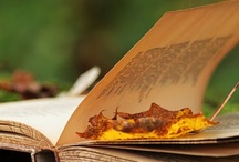 Autumn Leaves / Books to read this Autumn with a blanket, hot chocolate and the low sun shining through the pages.