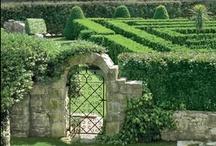 Gardens & Courtyards