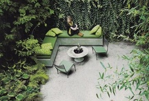 rookie architect : green / by rera