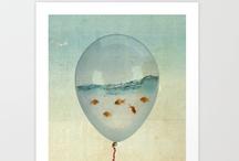 Prints / by Sarah S.R.