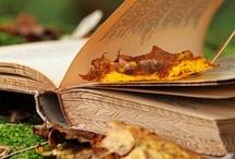 Autumn around the world / by Aki Kanamori