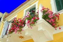 Garden, Balcony & Outdoor Design / by Julia