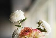 ♥ Flowers / by April Tse