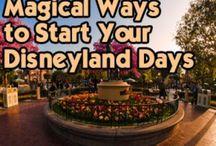 Disney here we come! / by Megan Quelvog
