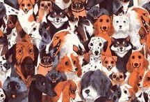 Animal Kingdom / by Mallory McInnis