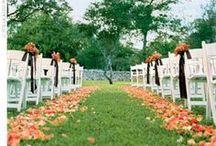 Wedding - The Big Day