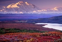 Alaska / I love Alaska! My roots are there. My ancestors are Aleut. I have a passion for the state and its people. They are special. I guess that's why I keep coming back to the place and to those who live there and why I've written ten novels that take place in Alaska.