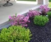 Outdoor Curb Appeal Ideas / Keep your curb appeal high with these lawn, gardening, landscaping, decor, lighting and home improvement ideas for the exterior of your home.