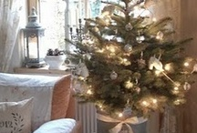 DIY Holiday Ideas / by Amber Funk