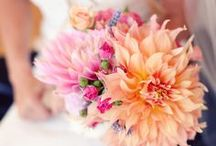 Dreamy Florals / by Ainsley Warczak
