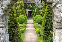 Topiaries / by Brooke Giannetti
