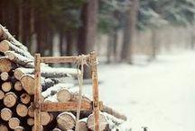 Winter / by Alexandra Girel Photographe