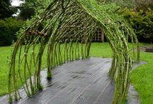 Gardening / by Kris Tabor