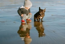 Pup pups and babies / by Whitley Keijner