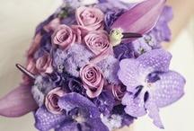 Purple and violet wedding