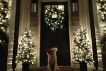 Christmastime is the best time / by Elise Grzebieniak