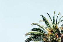 Island Vibes / Sun, sand, beach, cities, heat, Jamaica, vibes, good times, island life